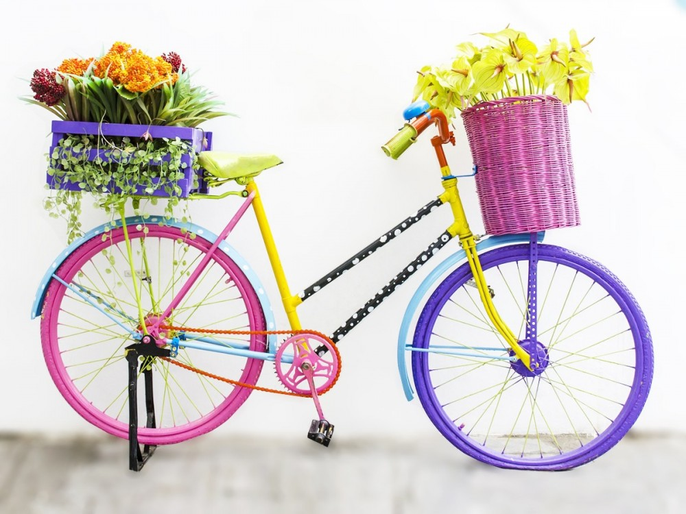 basket-bike
